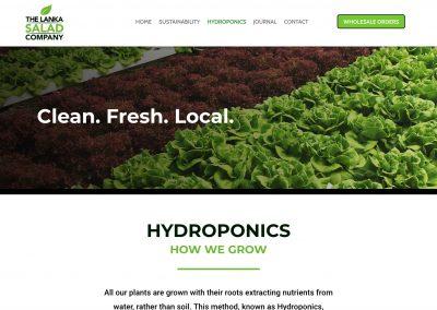 The Lanka Salad Company